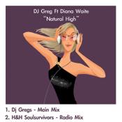 DJ Greg feat. Diana Waite - Natural High [Beat Monkey]