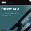 Random Soul - It's What You Got [Random Soul Recordings]
