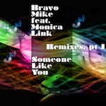 Bravo Mike feat. Monica Link - Someone Like You [Shifted Music]