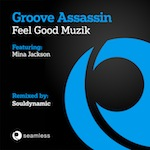 Groove Assassin feat. Mina Jackson - Feel Good Muzik [Seamless]