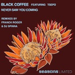 Black Coffee ft. Tsepo - Never Saw You Coming [Seasons Limited]
