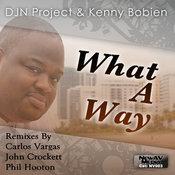 DJN Project & Kenny Bobien - What A Way [Newav Media]