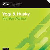 Yogi & Husky - Are You Waiting [Random Soul Recordings]