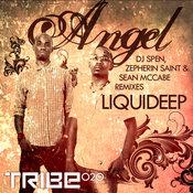 Liquideep - Angel [Tribe Records]